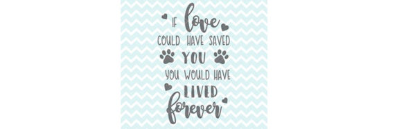 If Love Could Have Saved You Quote For Pets